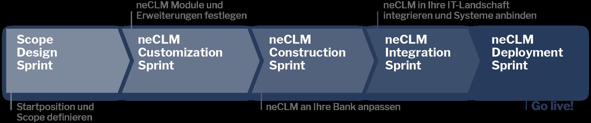 neCLM Realization Sprint